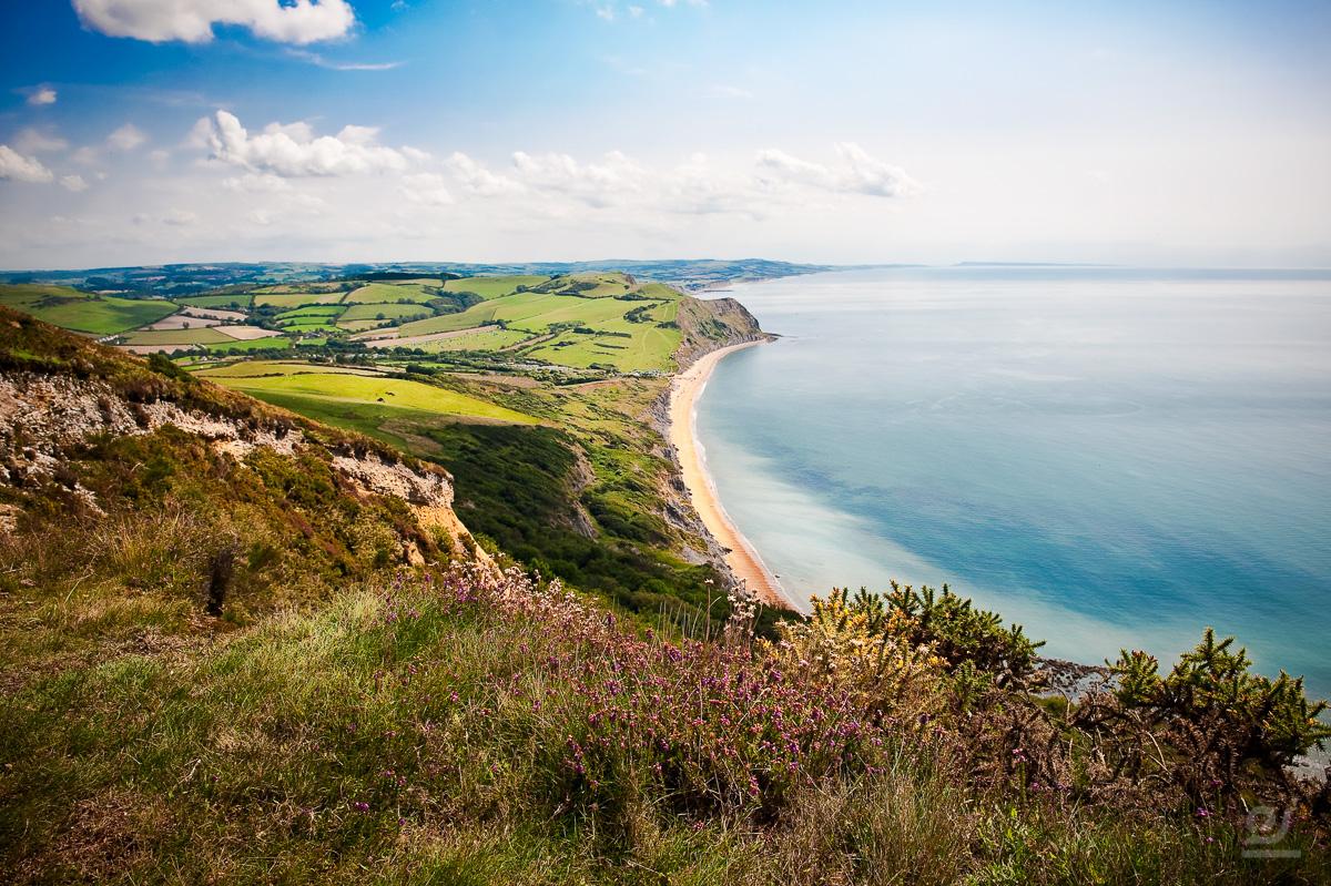 Photos of Dorset